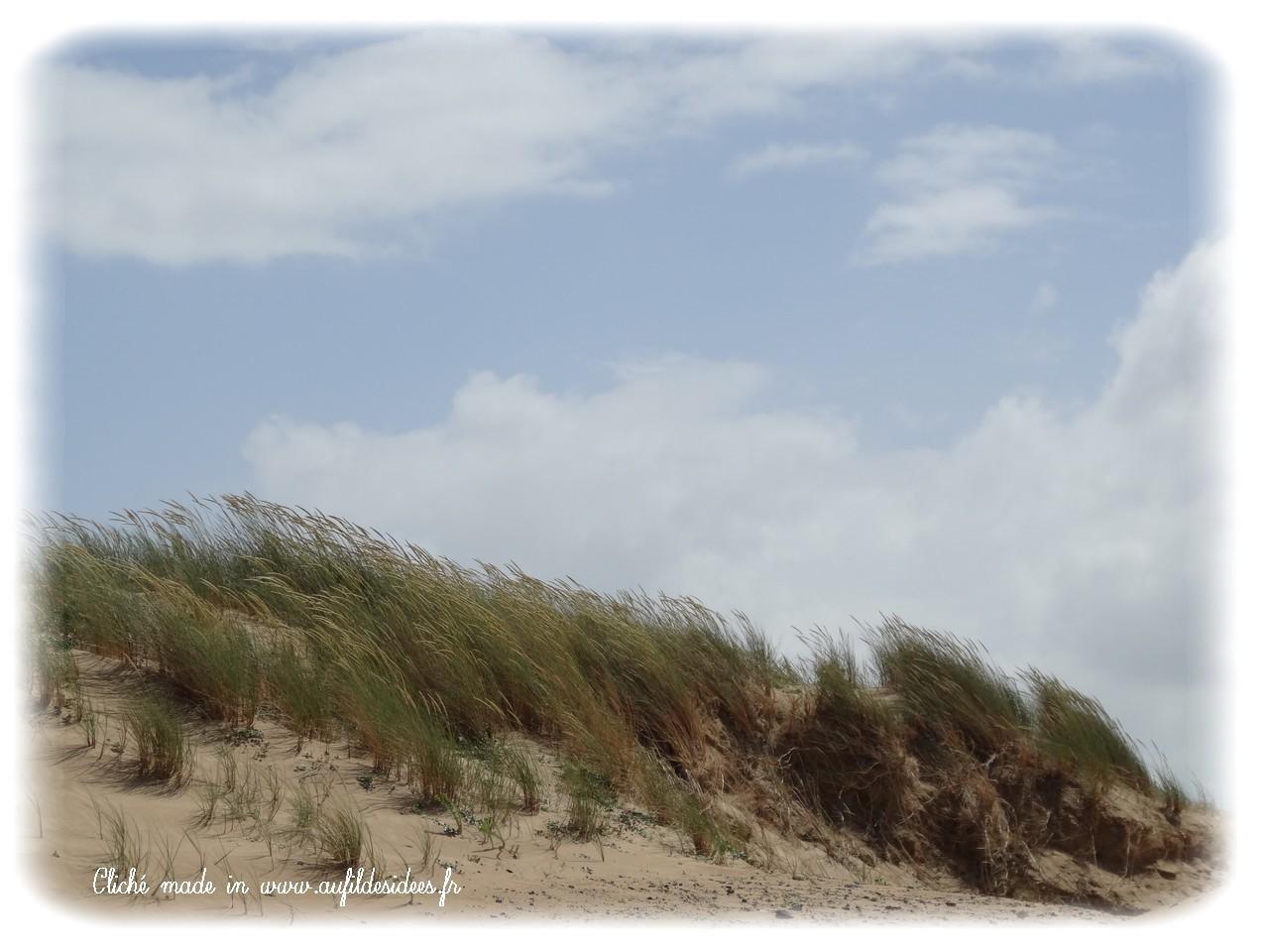 Longeville sur Mer (Vendée) - Eté 2013