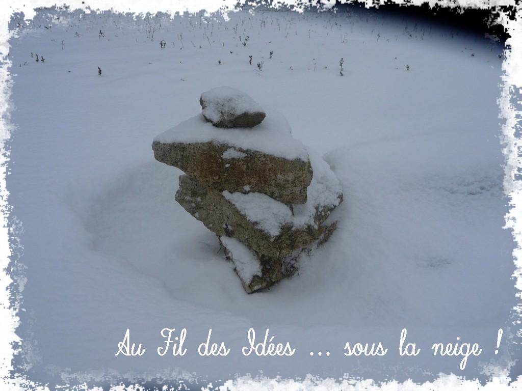 ... Un dimanche de février 2012