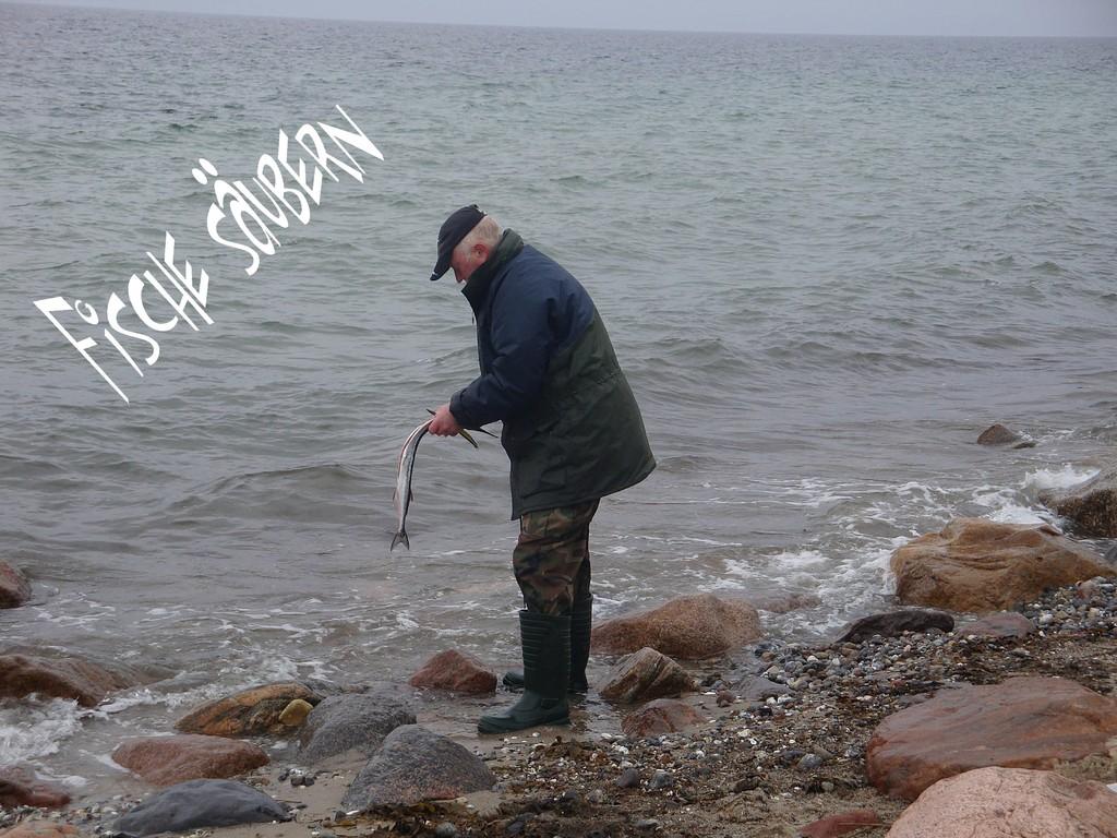 Fische säubern
