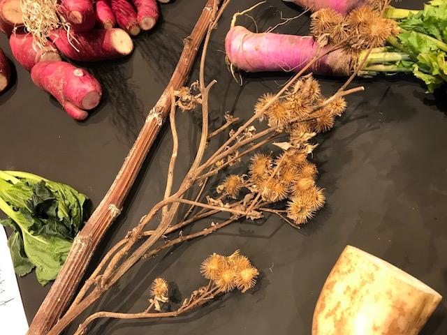色も形も味も様々な「古来種野菜」