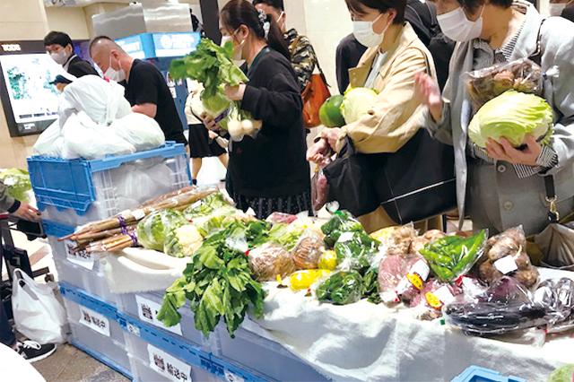 第15話 鉄道が運ぶ朝採れ野菜、食品ロス削減への新たな試み