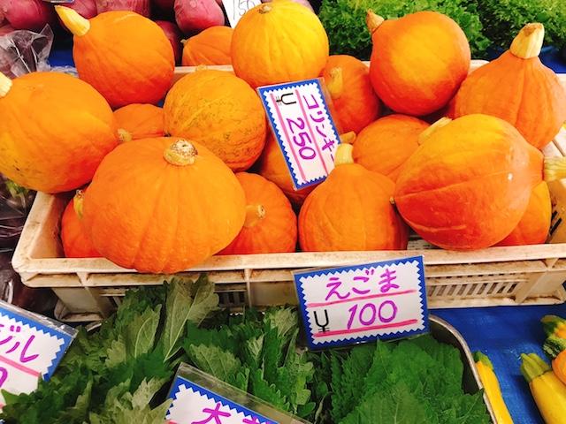 オレンジかぼちゃ「コリンキー」
