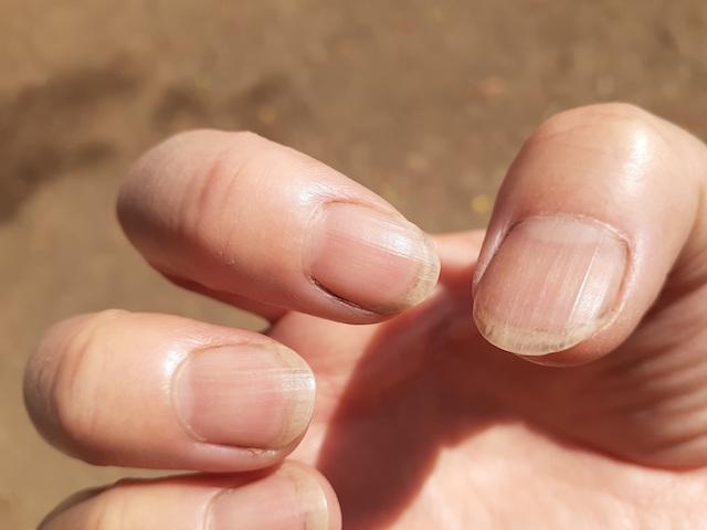 何度洗っても土がとれない。爪を切っておくべきだった…。