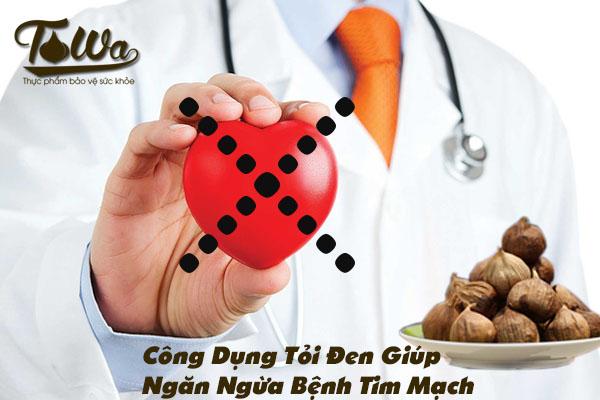 Tỏi đen trị bệnh tim mạch