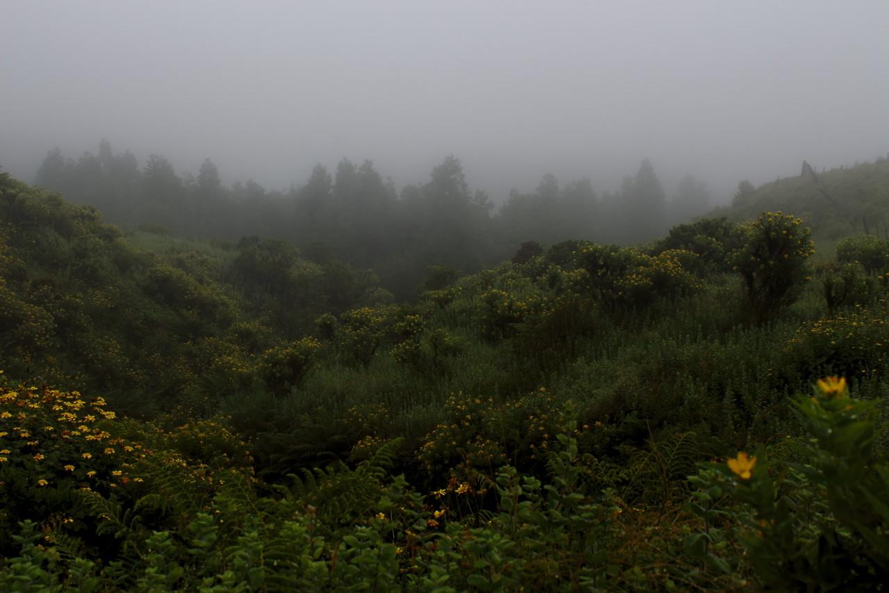Sommets de Sao Jorge sous les nuages - Eté 2013 © Florian Bernier