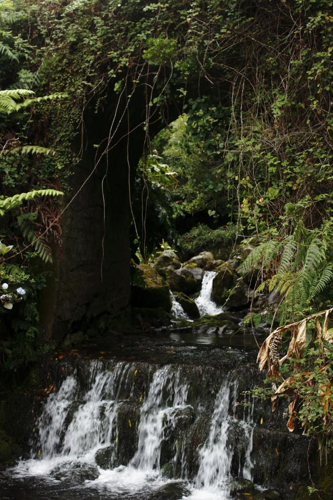 Ruisseau coulant dans la vallée - Eté 2013 © Florian Bernier