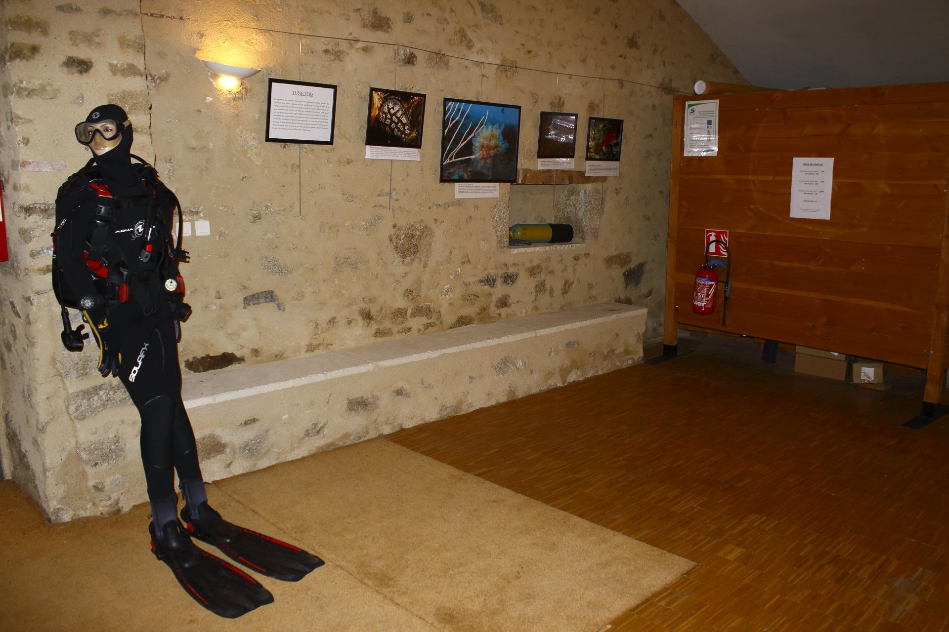 Mur des Tuniciers © Oct16 - Florian Bernier