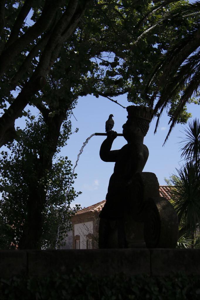 Pigeon et le Joueur de flute du Parc Municipal de Angra do Heroismo- 01aout13 @ Florian Bernier