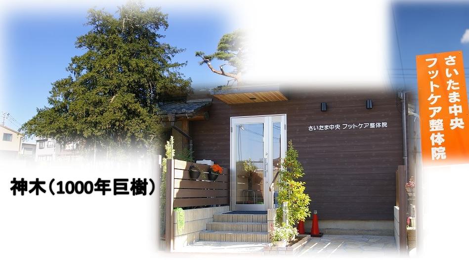与野本町駅徒歩14分の整体&フットケア院は口コミ人気
