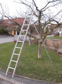 Obstbaumleiter