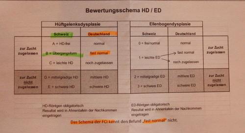 Quelle: Zeitung Schweizer Schäferhund Club (SKG)