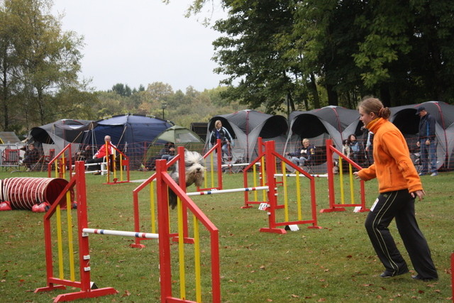 Turnier Ende 2009