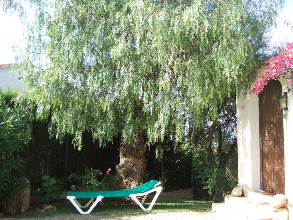 Schattenplatz unter dem Pfefferbaum, herrlich