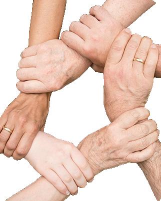 Grafik: Geldspenden & Sachspenden für die gemeinnützige Stiftung Hof Schlüter, Lüneburg | Foto von Anemone123 auf Pixabay