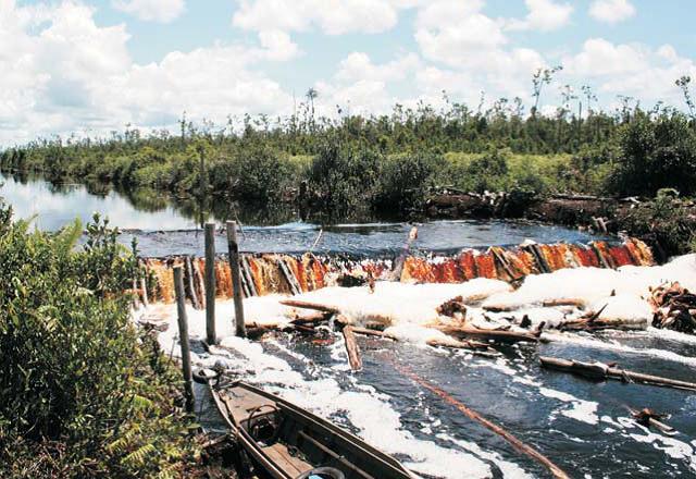 Wetlands Interの泥炭湿地の運河の改善