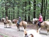 Reiten im Oberpfälzer Wald