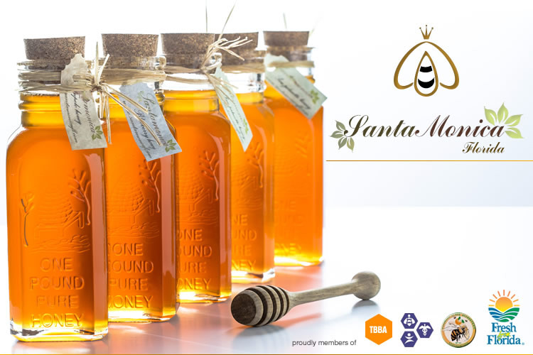 Santa Monica Florida Local Raw Honey