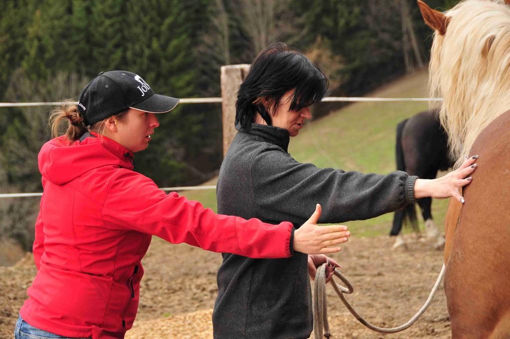 Horsemanship Trainer - Martina Jeremic