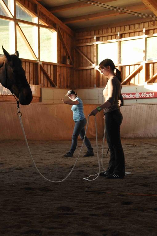 horsemanhsip training