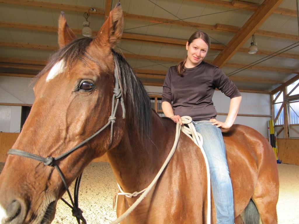 Natural Horsemanship Steiermark