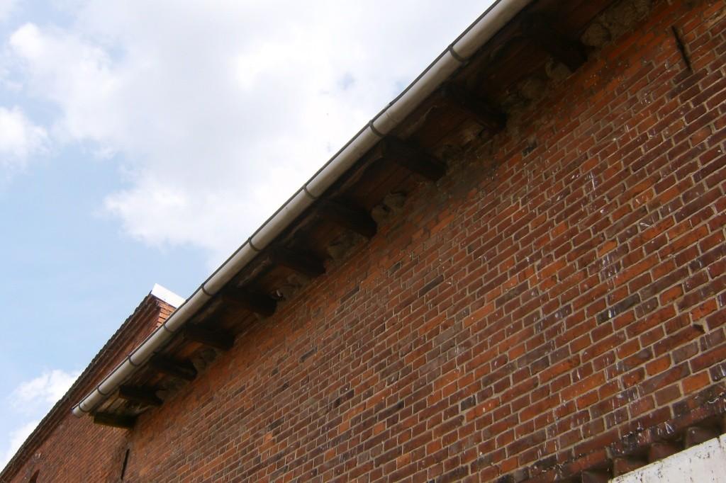 Auch an der anderen Seite des Wohnhauses brüten Mehlschwalben