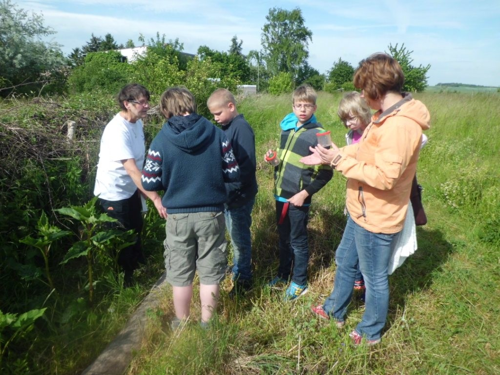 Christa Schmidt (li.) mit Schülerinnen und Schülern beim Fang von Insekten und Spinnen