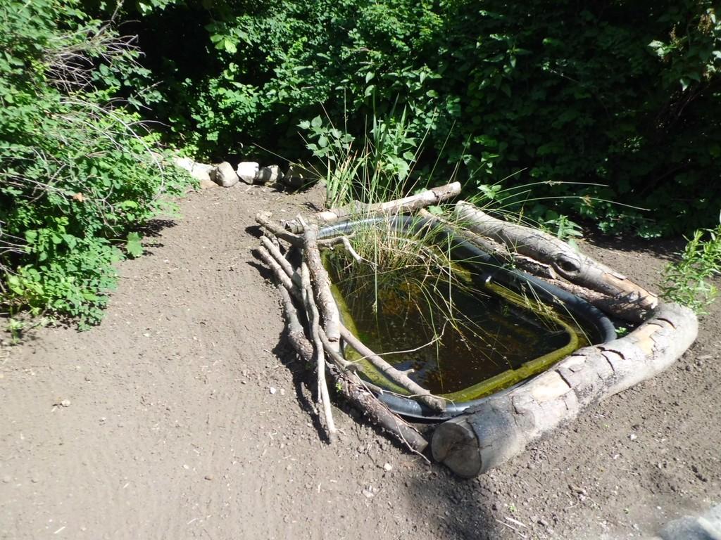 Ein zweiter kleiner Teich