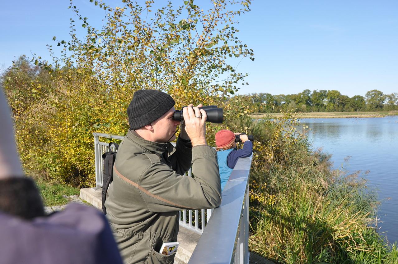 Die Beobachter... (Foto: Ulrich Meinhard)
