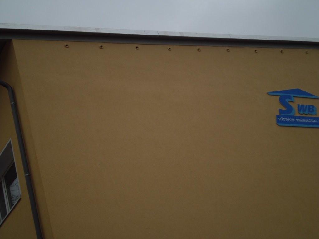 ...neun Nistkästen für Mauersegler einbauen lassen. Gut zu sehen sind die ovalen Einfluglöcher.