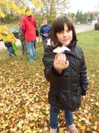 Auch Pilze wurden auf dem Weg ins Tannenwäldchen gefunden