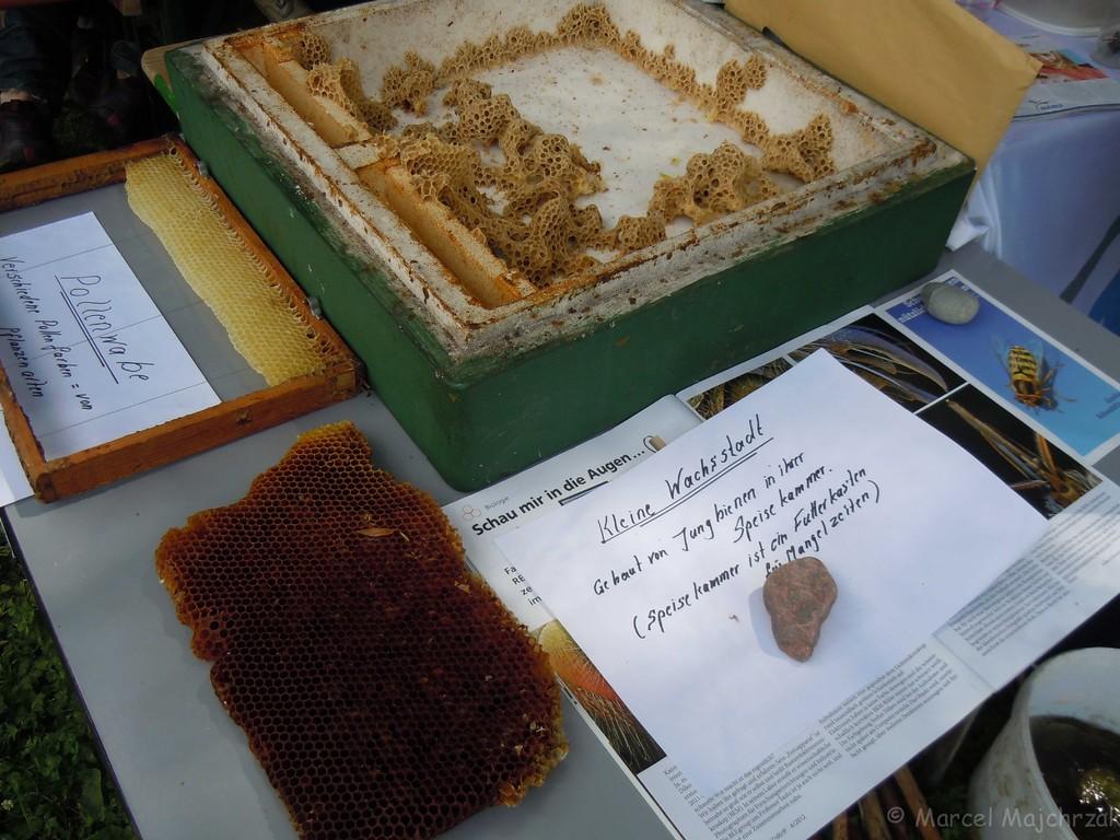 ...wie die Bienenwaben oder ...
