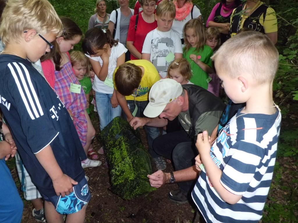 """Michael Wunschik zeigt den Kindern den """"Fang"""": Wasserkäfer, Insektenlarven..."""