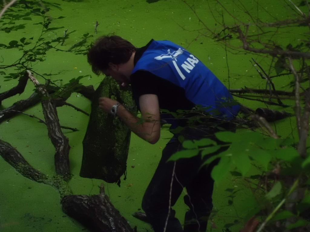In den Gewässern haben wir zwei Kleinfischreusen platziert, um den Kindern die Tiere im Wasser näher zu bringen. Marcel holt eine solche Falle heraus
