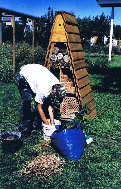 Das Insektenhotel wird neu bestückt