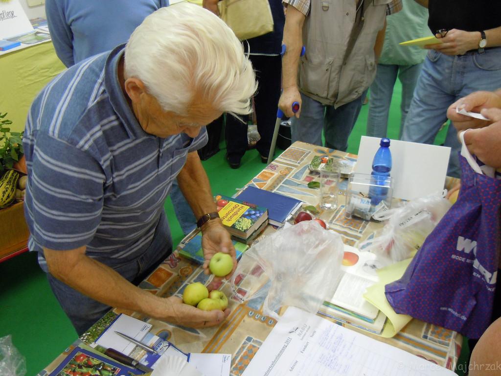 Sigurd Schossig beim Begutachten von Äpfeln