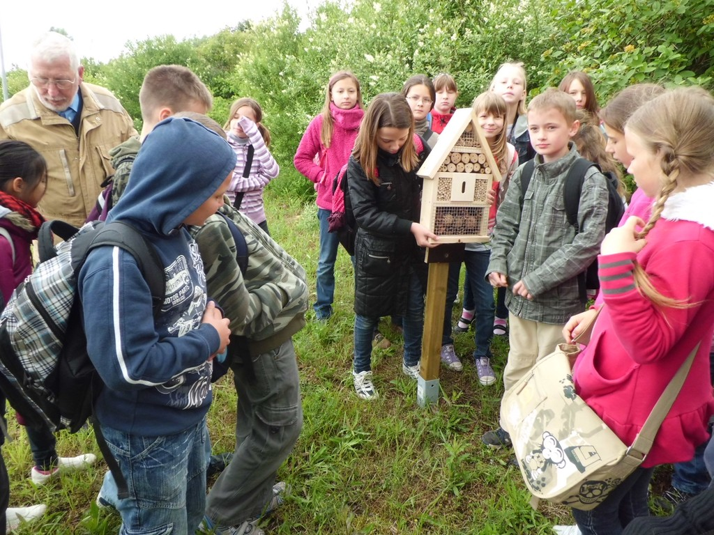 Günter Rockmann (li.) und Schüler stellen eines der Insektenhotels auf