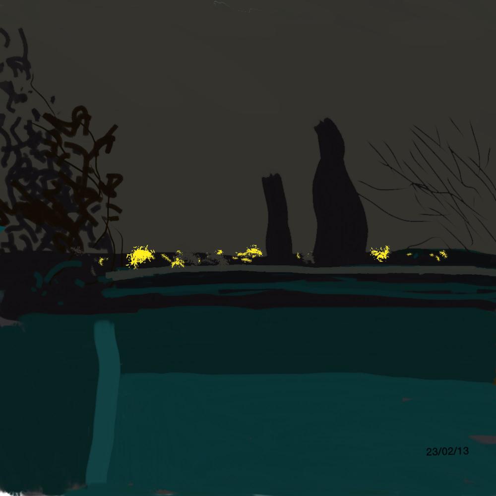 Nuit sur la terrasse–2014