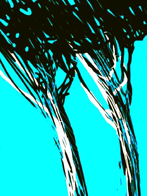 Pins–2013