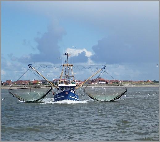 Krabbenkutter vor Baltrum