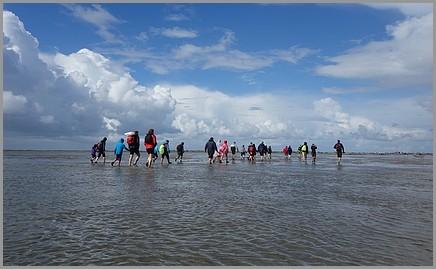 Wattwandern zur Insel Baltrum