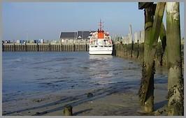 Niedrigwasser im Spiekerooger Hafen