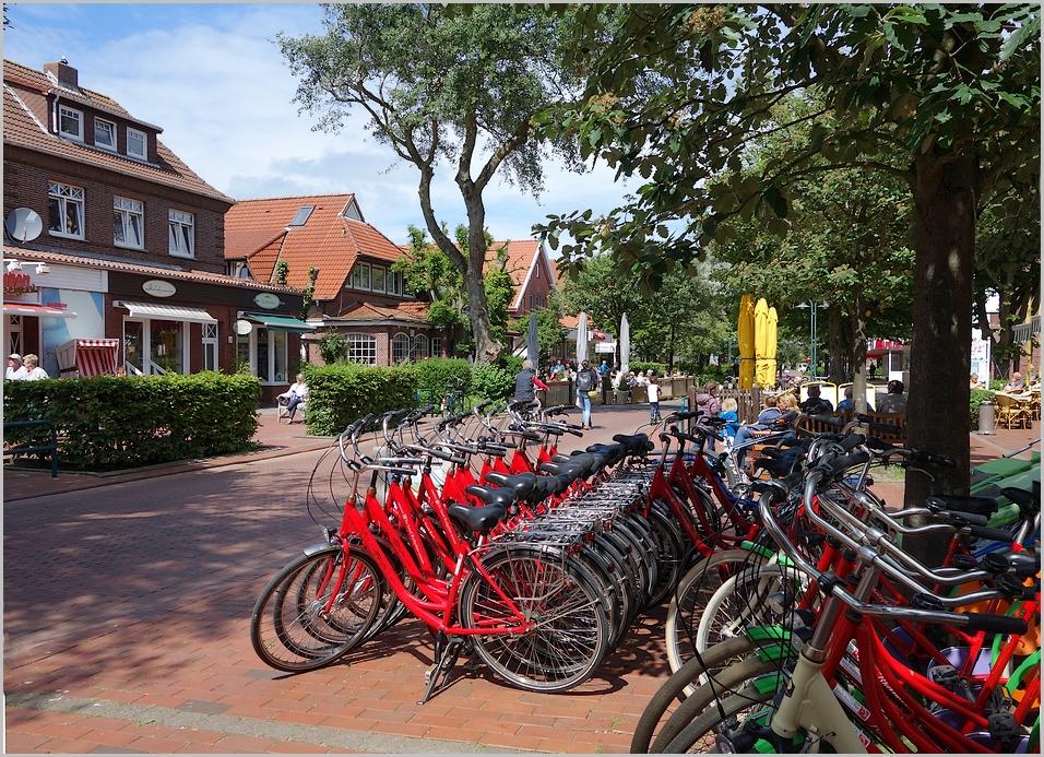 Langeoog - die Insel der Radfahrer