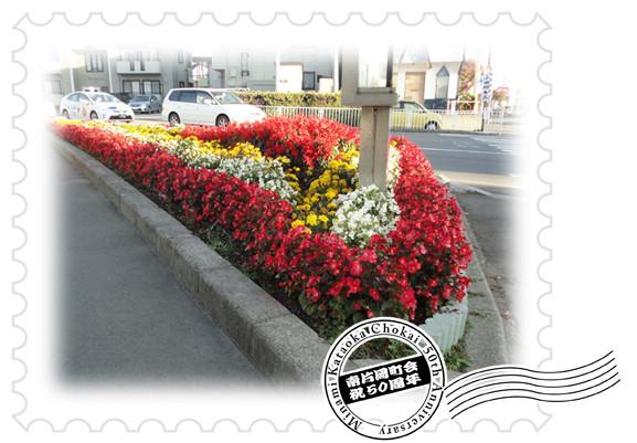 平成26年度「花壇整備・奨励賞」