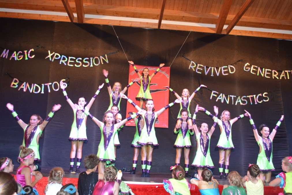 Fantastic Society, Dance Society Alzey