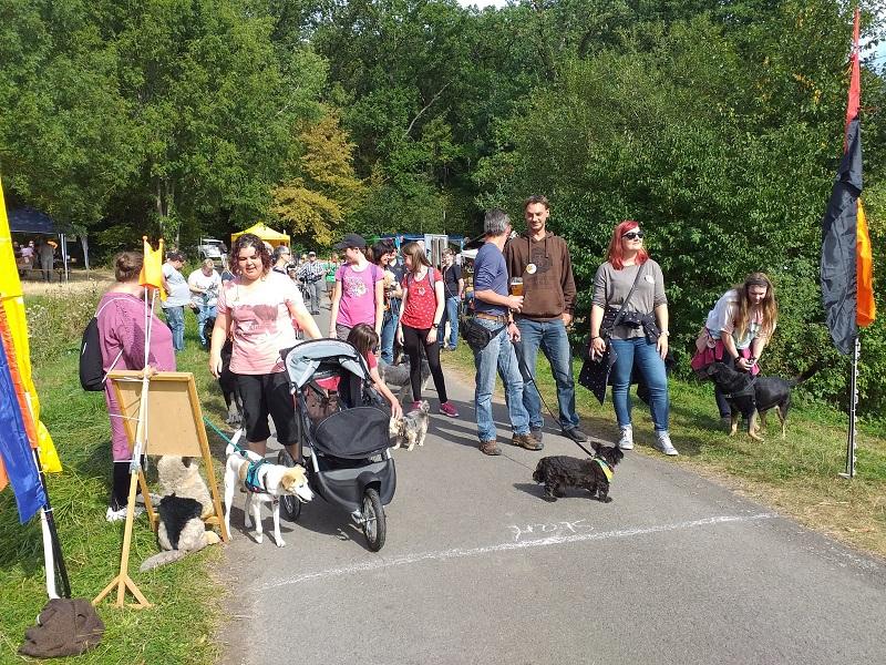 Dann starteten die Teilnehmer Gehen mit oder ohne Hund