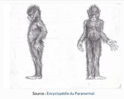 encyclopédie du paranormal