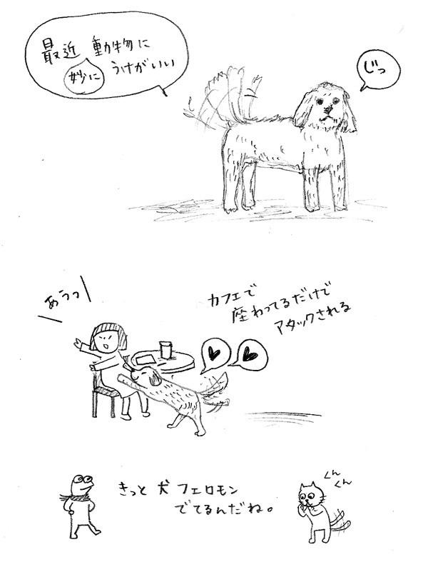 popular among dogs