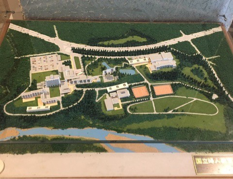 国立女性教育会館(NWEC・ヌエック)の全体模型。右が研修棟で左が本館及び宿泊棟)