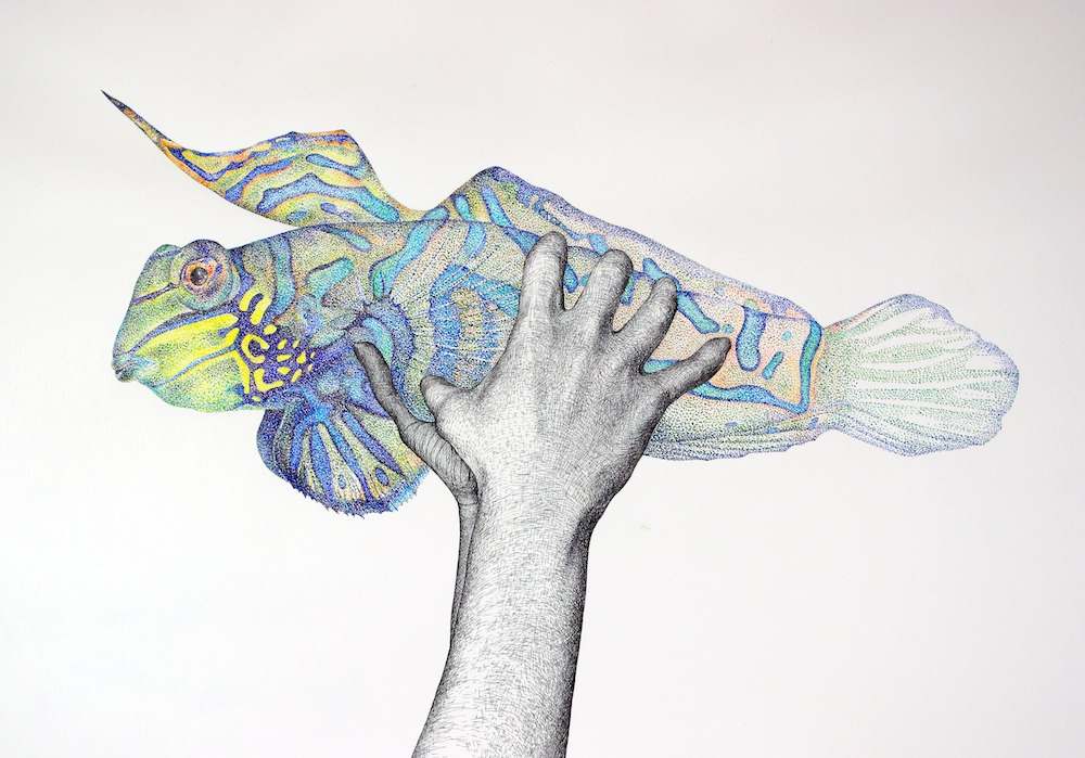 Hände und Fisch, 2006. (Gouache und Tuschestift auf Papier, 50 x 70 cm, Privatbesitz)