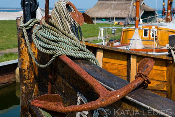 Fischland Darß-Zingst: Im Hafen
